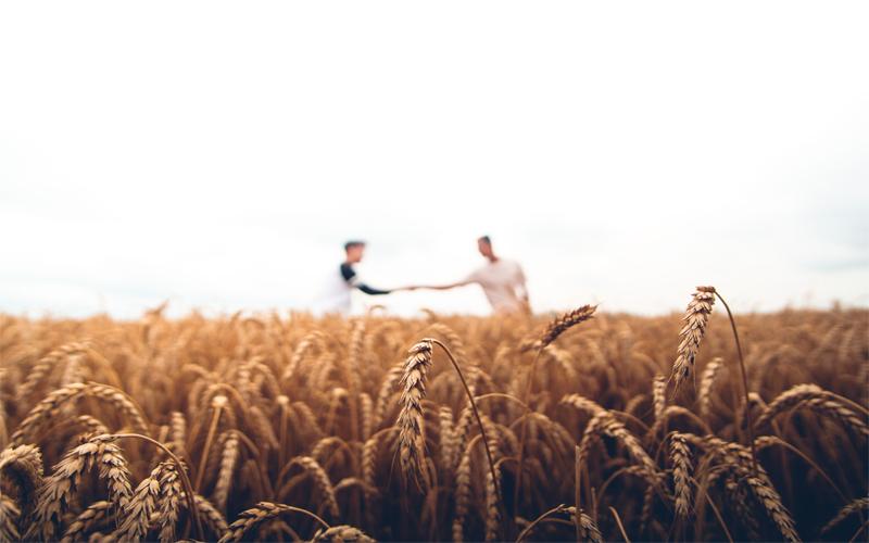 Escuchamos las necesidades de tus cultivos